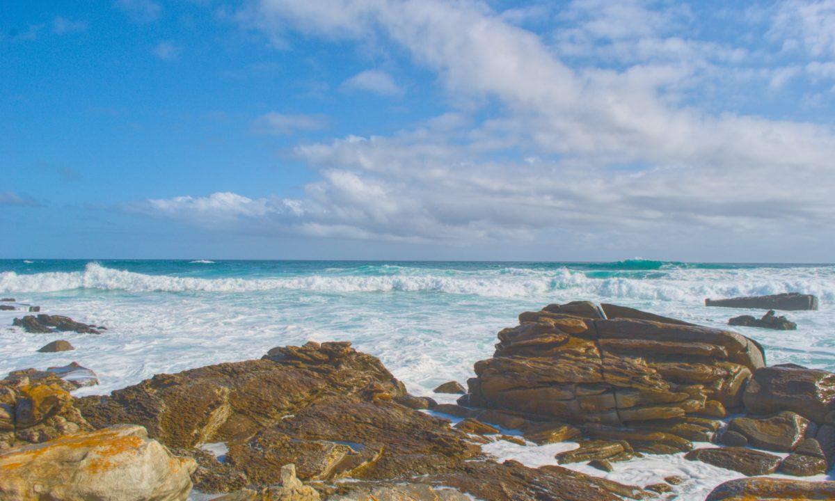 Honeymoon Destination: Port Elizabeth, South Africa
