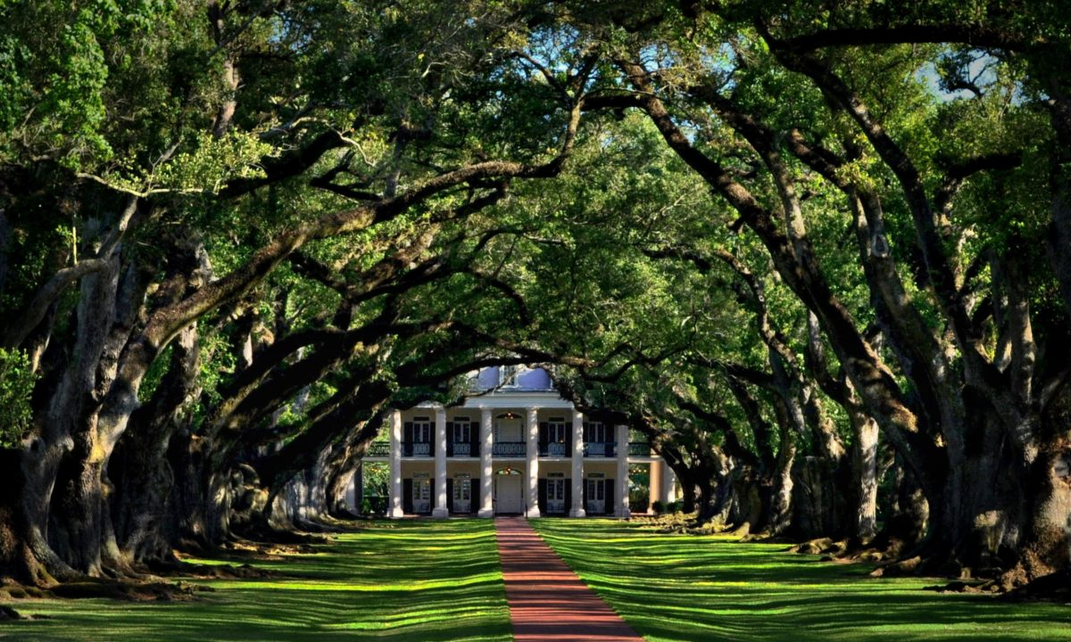 Wedding Planning in Louisiana