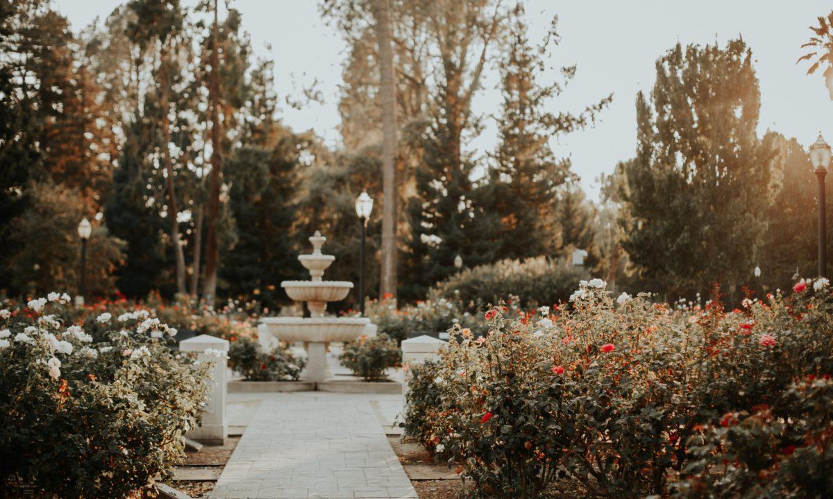 Incredible Wedding Venues in Sacramento