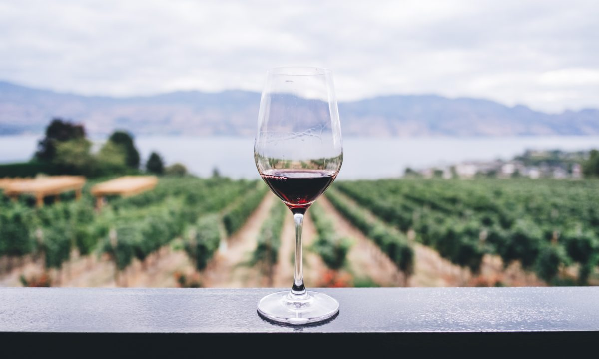 Honeymoon Destination: Washington State Wine Country