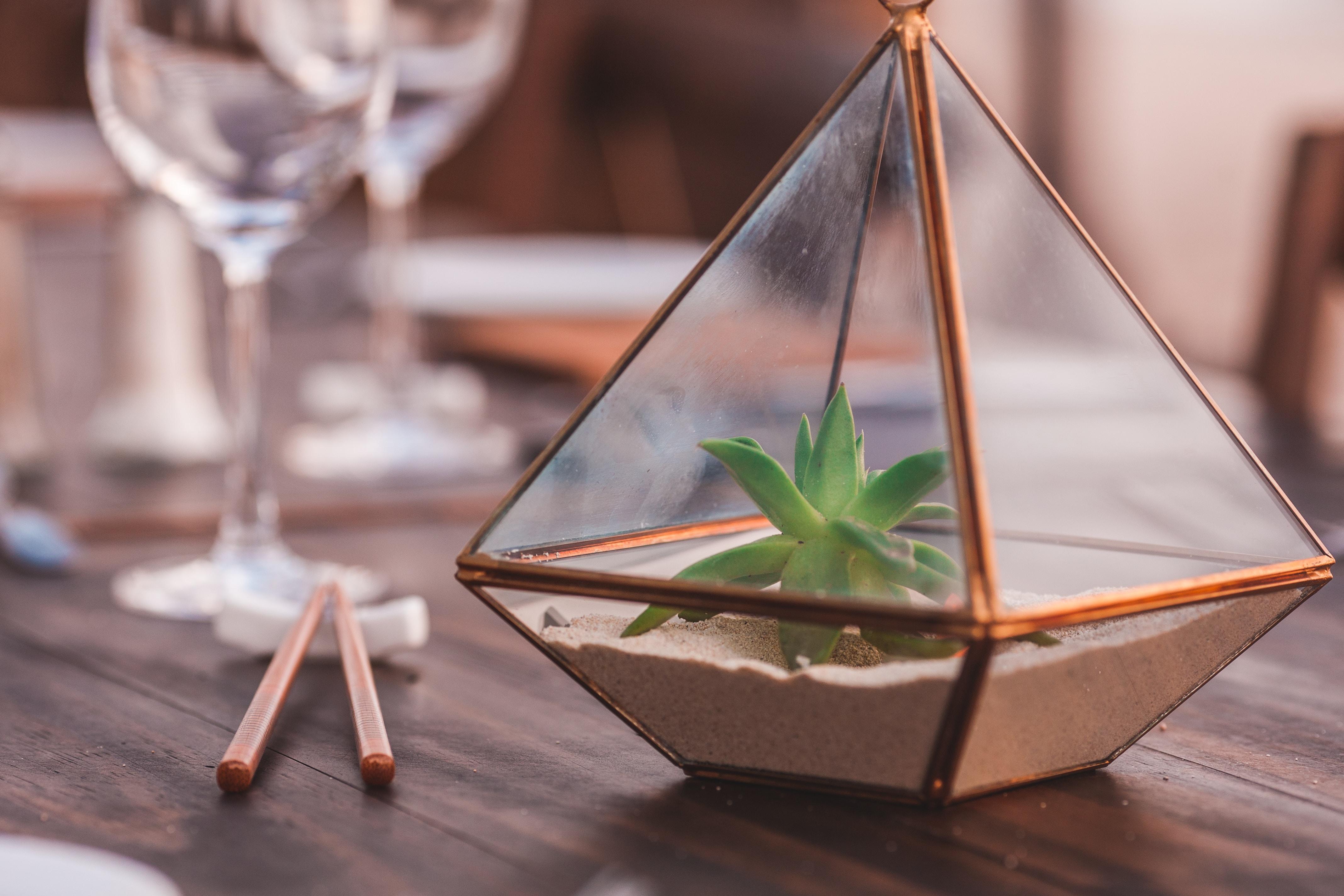Cactus Wedding Centerpieces Mywedding