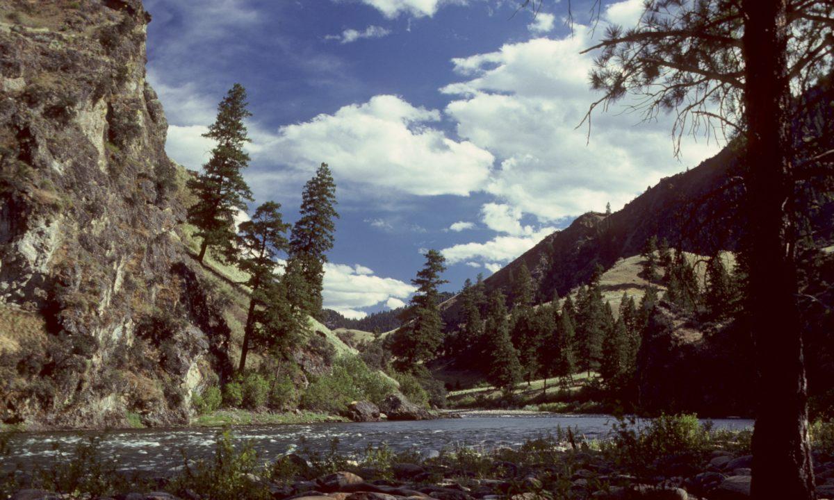 Honeymoon in the Rugged Beauty of Idaho