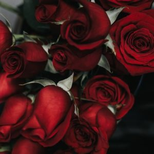 What You Need to Get Engaged on Valentine's Day