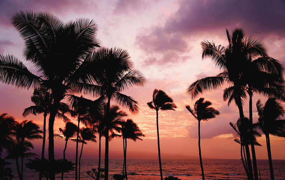 5 Must-Haves for Your Tropical Honeymoon