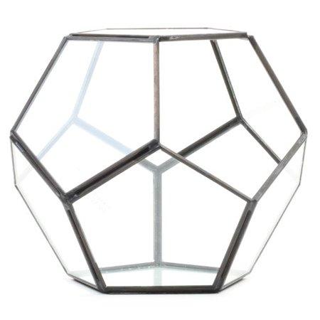 Pentagon Geometric Table Glass Terrarium