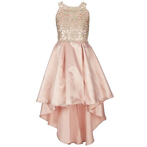 Xtraordinary Floral Embroidered Rose Gold Dress