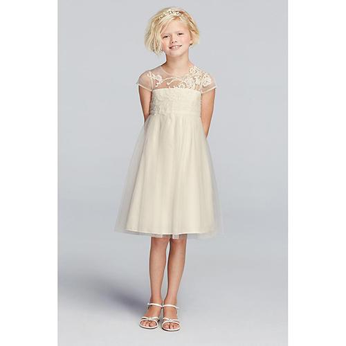 Mesh Dress with Illusion Neckline