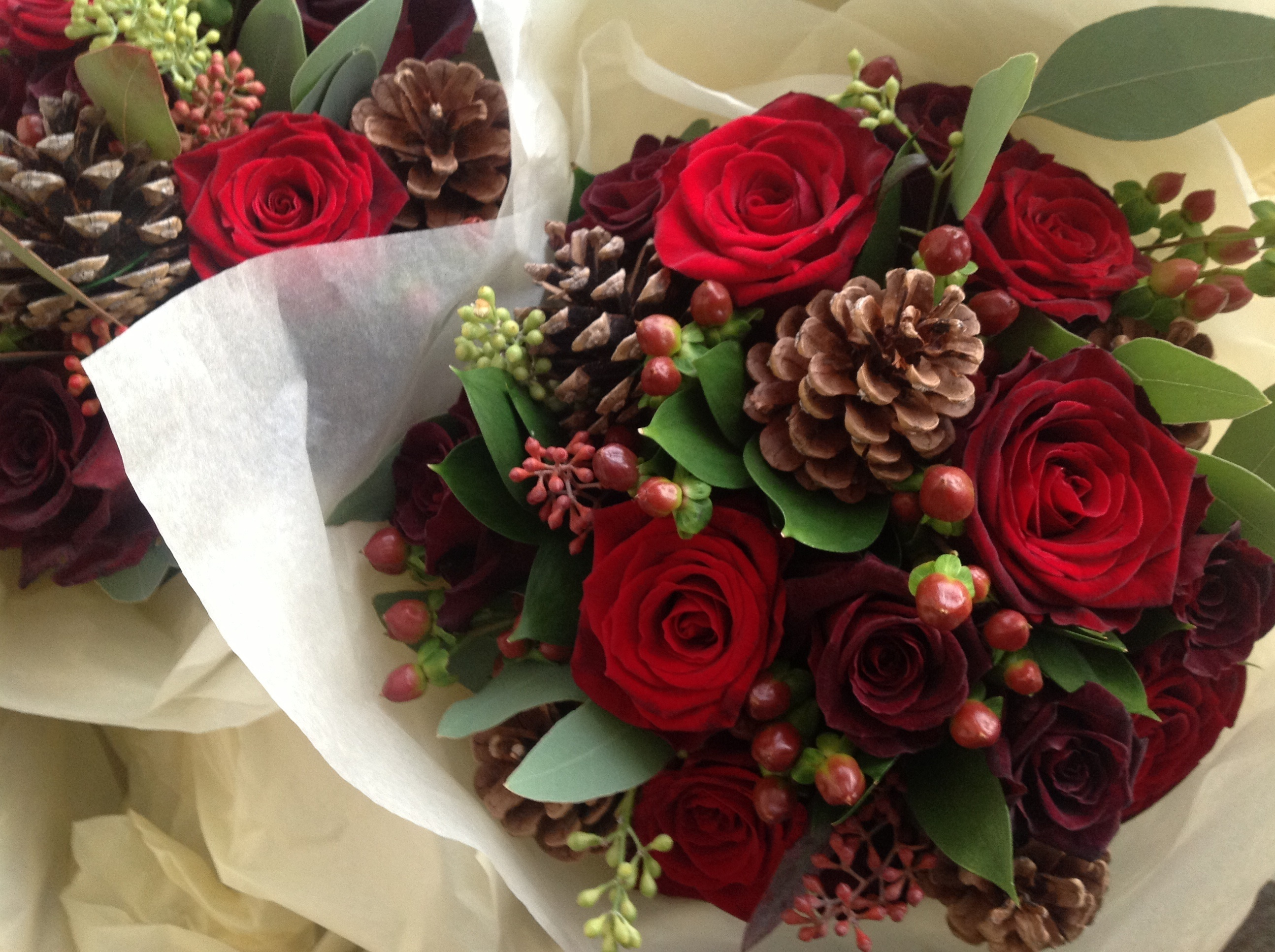 Red Roses and Pine Cones